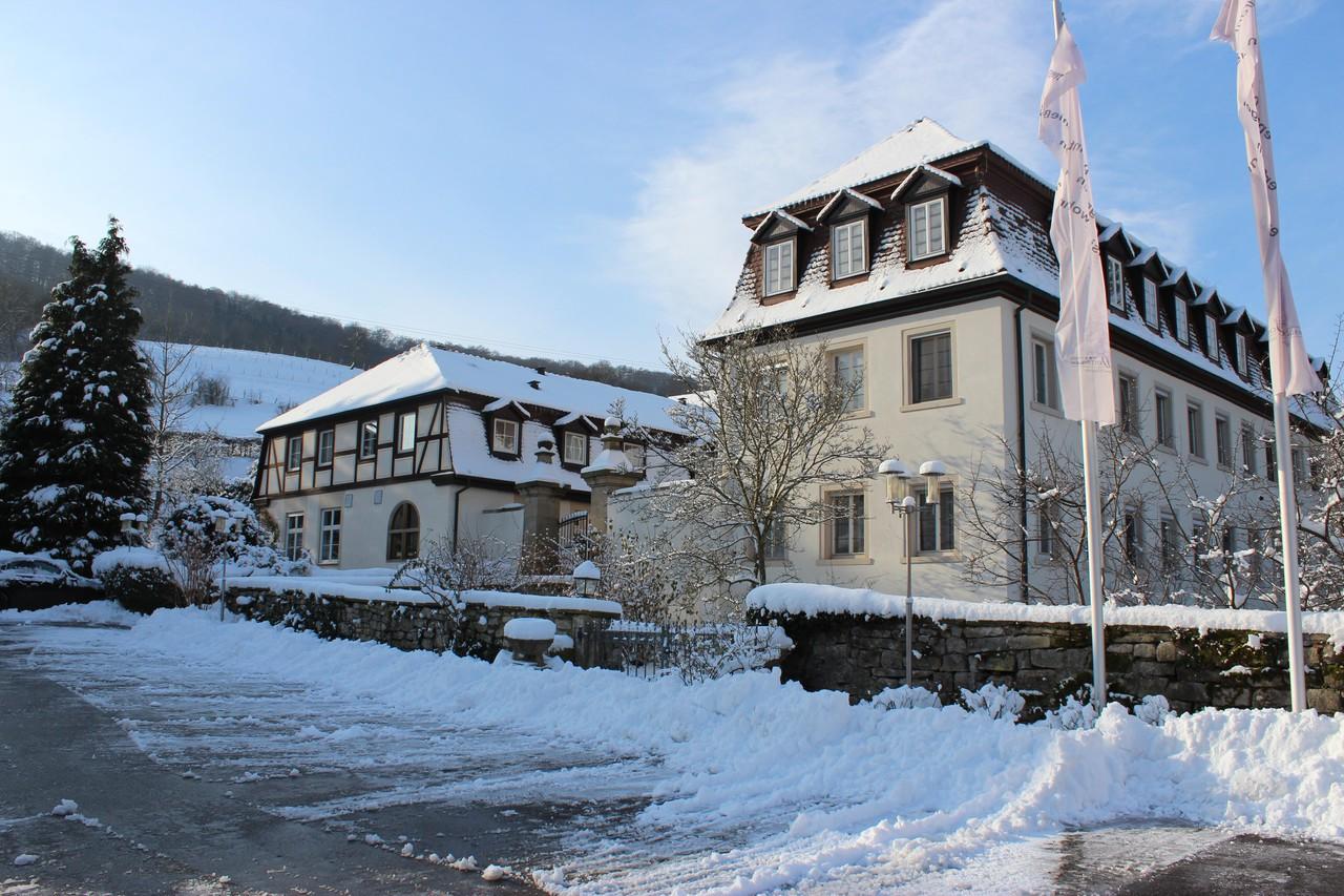 Rest der Welt   Hotel Restaurant Schloss Döttingen image 1240